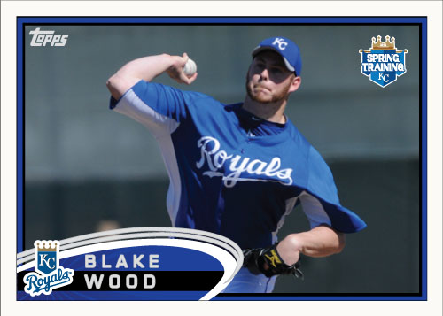 Blake Wood 2012 Spring Training custom card